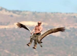 putin-riding-bird
